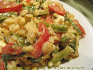 Barley Salad with Red and Green Peppers