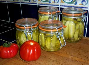 Dill Pickles with Garlic and Onion